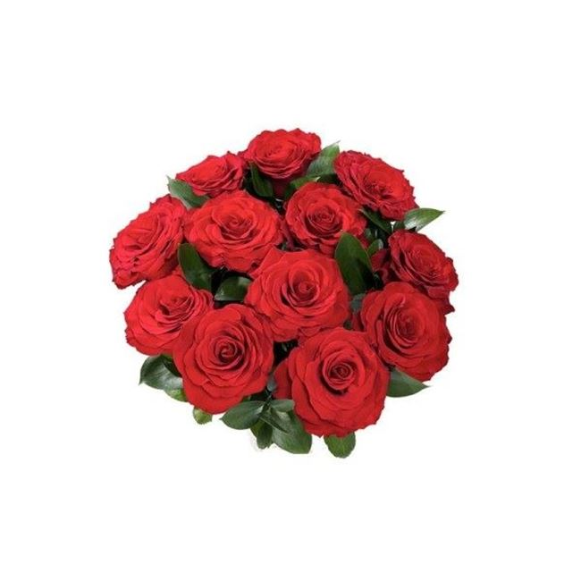 Picture of SHORT ROSES 2 FOR $20.00